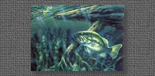 Oil painting of largemouth bass and buzzbait
