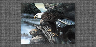 Bald Eagle print commissioned by YZ Industries for Executive Art Series