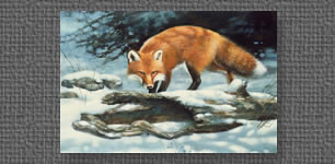 Oil painting on masonite of red fox in snow