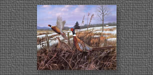 Pheasant print commissioned by YZ Industries for Executive Art Series