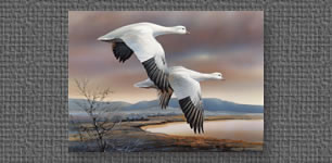 Ross Geese, Nevada State Duck Stamp entry