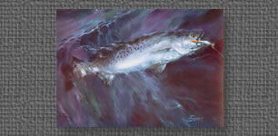 Oil painting of Speckled Trout - collection of the artist